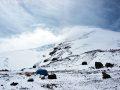 Штурмовой лагерь. Высота 4300 м.