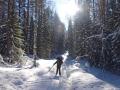 Лыжный поход по Кенозерью
