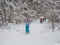 Лыжные прогулки по Подмосковью