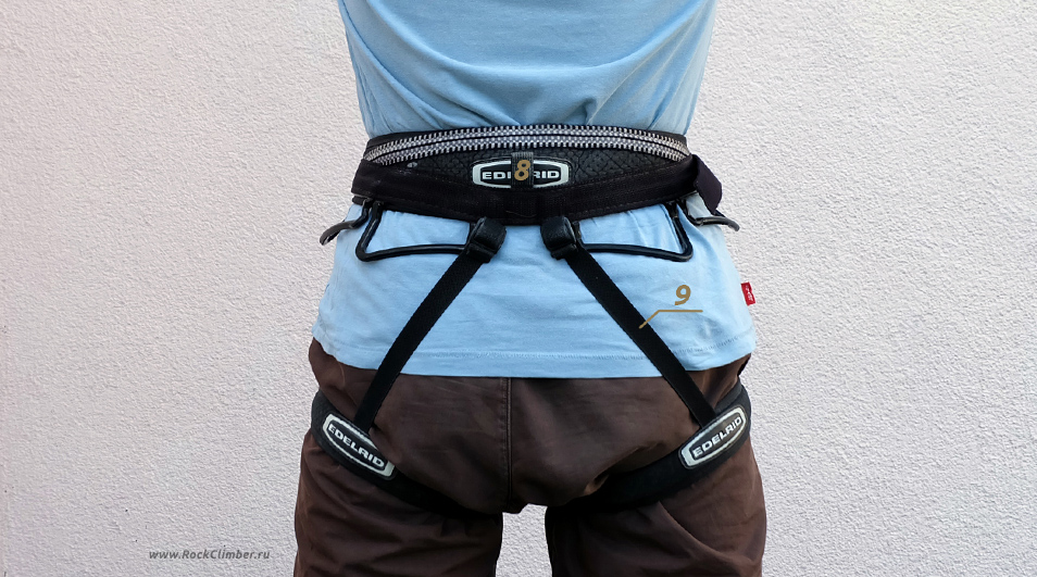 harness_back
