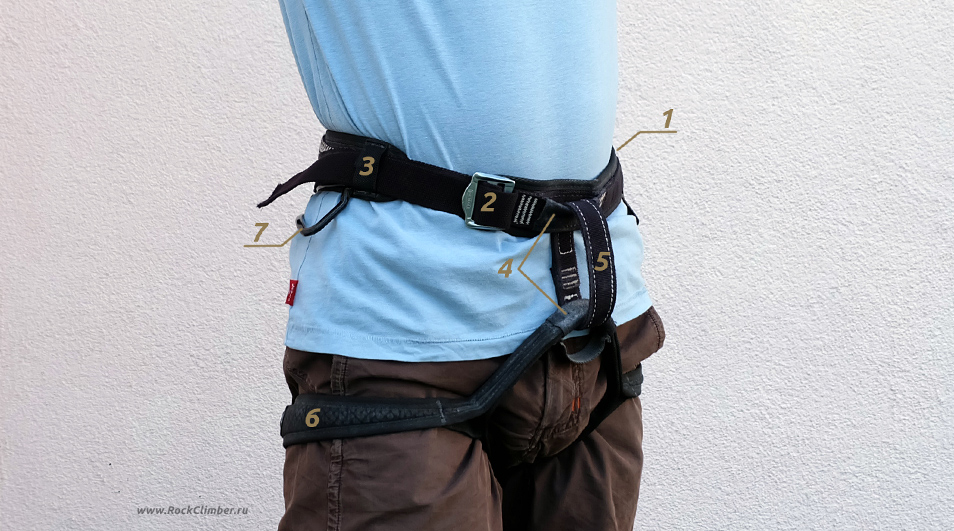 harness_front