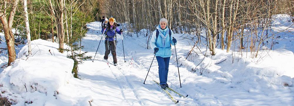 Лыжный поход в Бородино